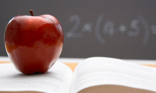 teacher-78159933